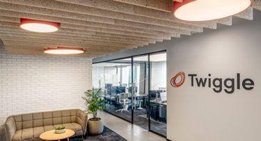 מנורות תקרה בפרויקט Twiggle